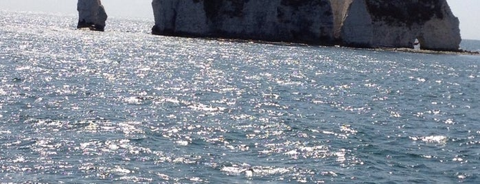 Old Harry Rocks is one of Locais salvos de Sevgi.