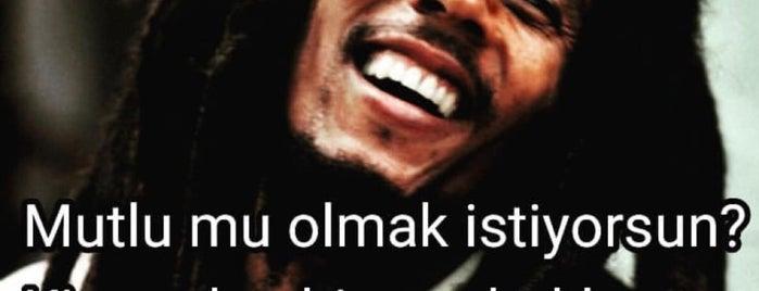 İpekyolu ızgara is one of Tempat yang Disukai Yahya.