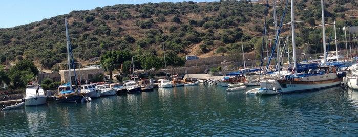 Bitez Marina is one of สถานที่ที่ Arda ถูกใจ.
