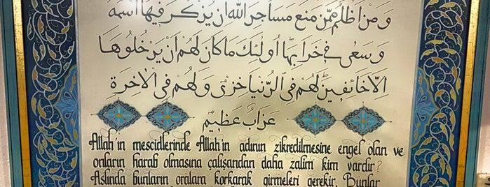 Tevhid Camii is one of Konya Meram Mescit ve Camileri.