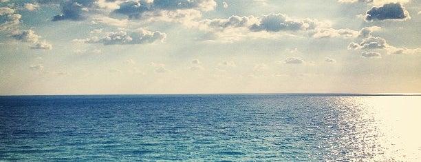 Ramada Plaza Marco Polo Beach Resort is one of สถานที่ที่บันทึกไว้ของ Alice.
