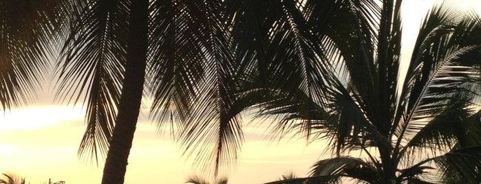 Playa Decameron is one of Lieux qui ont plu à Liliana.