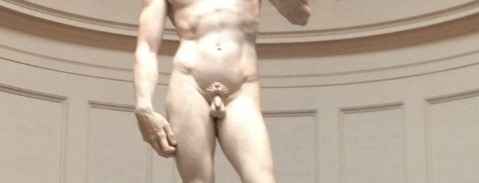 Galleria dell'Accademia is one of Where to go in Italy.