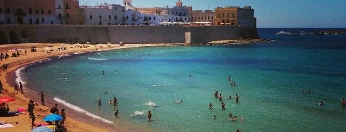 Spiaggia della Purità is one of สถานที่ที่ Sebastian ถูกใจ.