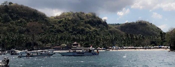 Kelingking Beach is one of Bali.