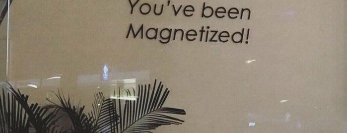 Magnet (Downtown) is one of S🌞✨'ın Beğendiği Mekanlar.