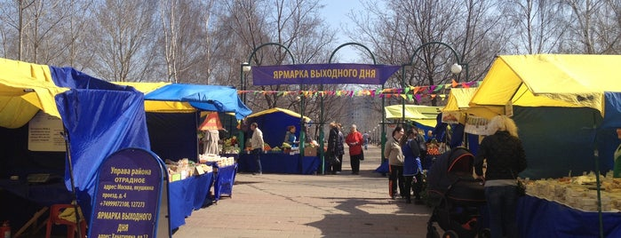 Ярмарка выходного дня is one of Svetlana : понравившиеся места.