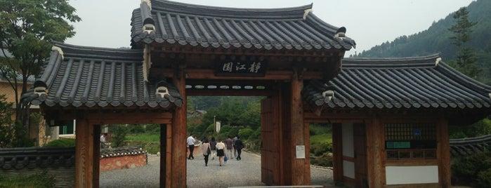 정강원 is one of Local.
