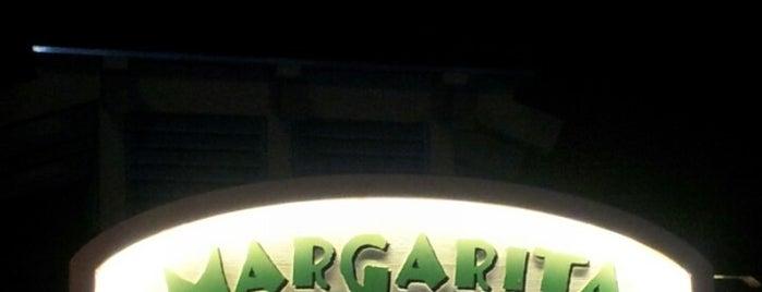 Margarita Bar is one of Disney Springs.