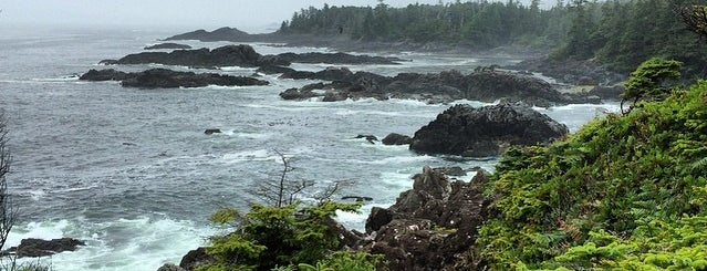 Wild Pacific Trail is one of West Van Island.