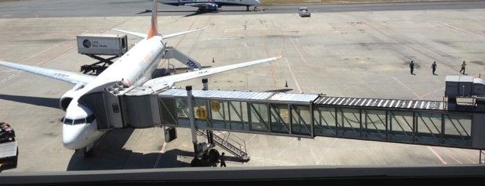 Aeroporto Internacional do Recife / Guararapes (REC) is one of Airports.