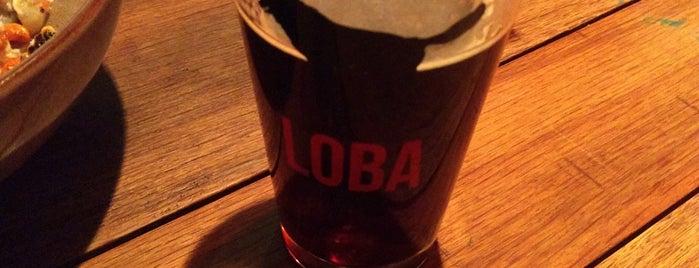 Cerveza LOBA is one of Locais curtidos por Jhalyv.