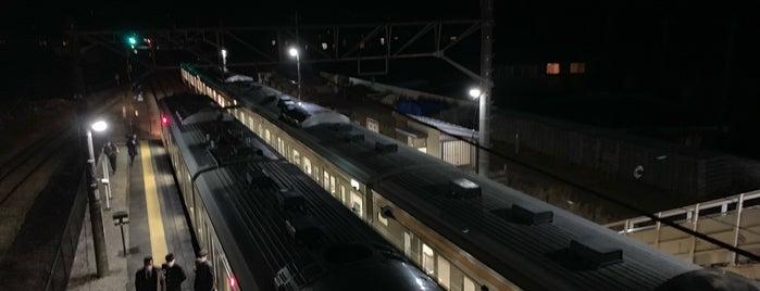 Kanashima Station is one of JR 키타칸토지방역 (JR 北関東地方の駅).