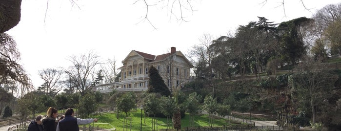 Emirgan Korusu is one of Lugares favoritos de Fatih.