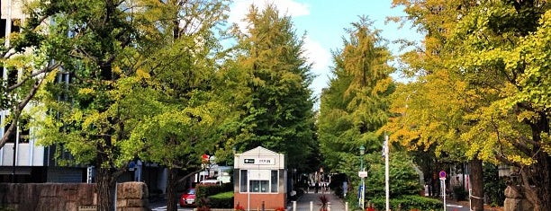 Hamacho Park is one of Posti che sono piaciuti a Nonono.