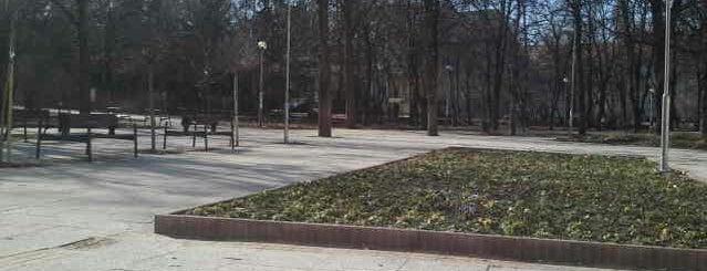 Erzsébet-liget is one of Parks.
