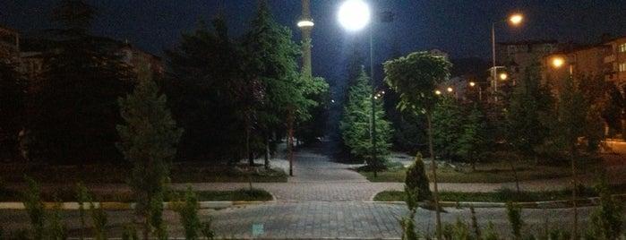 Kocaçay Yürüyüş Parkuru is one of Mert'in Beğendiği Mekanlar.