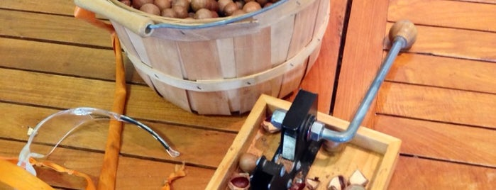 Hamakua Macadamia Nut Company is one of Big Island.