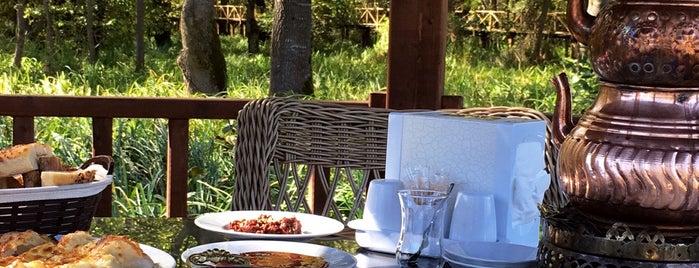 Çakırlar Korusu Cafe ve Restaurant is one of Posti che sono piaciuti a CaNaN.