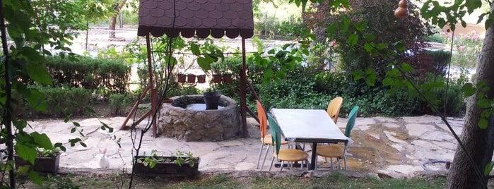 Zeytin Kır Bahçesi is one of MEYHANELER.