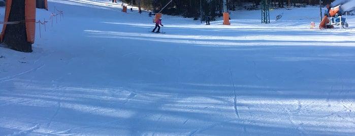 Ski areál/Lanový Park Peklák is one of MTB v Česku.