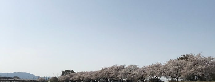 児玉千本桜 is one of State of Gummar.