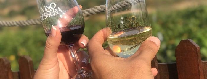 Vino Dessera Vineyards is one of Trakya.