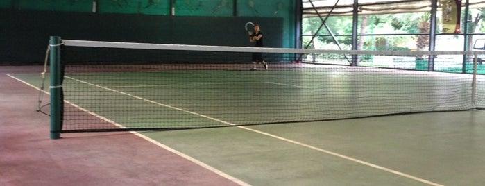 Tenis Park is one of Lugares favoritos de Emre.