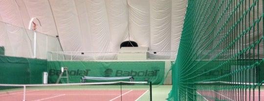 Теннисные корты и клубы москвы клубе путешественников москва