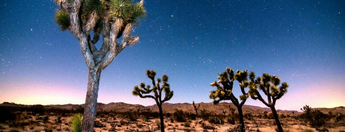 Joshua Tree National Park is one of National Parks.