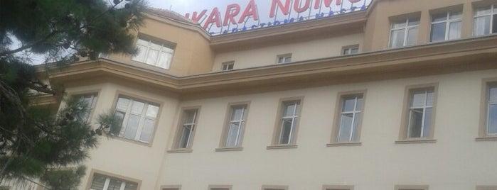 Ankara Numune Eğitim ve Araştırma Hastanesi is one of İŞYERLERİ.