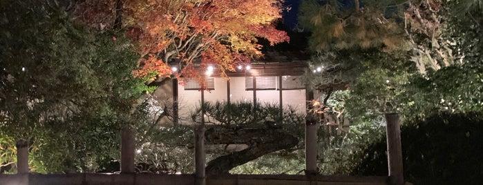 Matsugae is one of Tempat yang Disukai Cynthia.