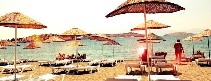 Şamata Beach is one of Lieux qui ont plu à Erman.