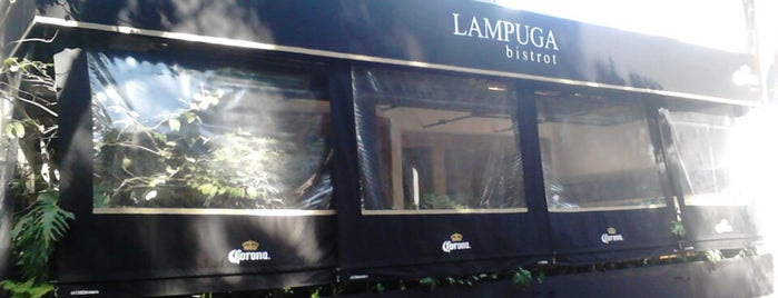 Lampuga is one of Restaurantes Mexico DF.