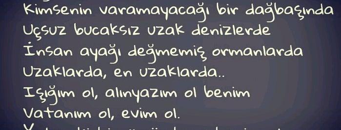 yaşampınarım is one of Pınar'ın Beğendiği Mekanlar.