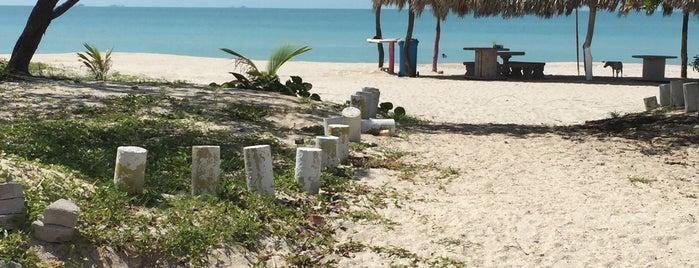 Playa Gran Duquesa is one of Locais curtidos por Plinio.