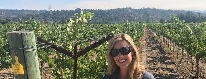 Crocker & Starr Wines is one of NVFF | Wine Partners.