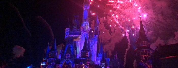 Cinderella Castle is one of Rona. 님이 좋아한 장소.