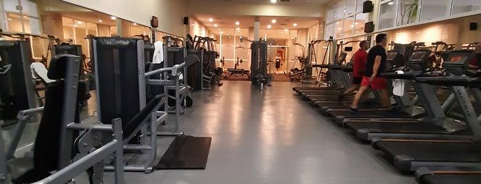 Polat Resort Hotel Gym is one of Orte, die Pınar gefallen.