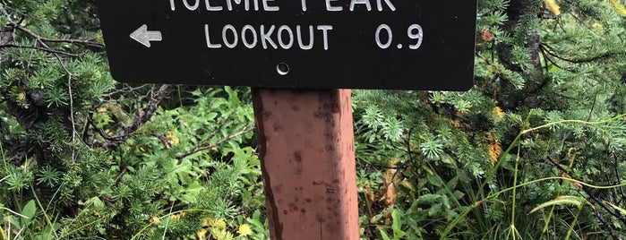Tolmie Peak Lookout is one of Trails.