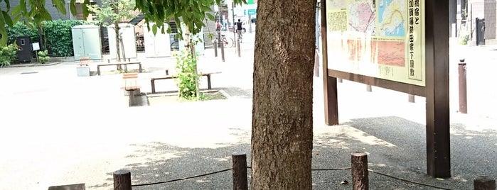 板橋三丁目縁宿広場 is one of 神輿で訪れた場所-1.