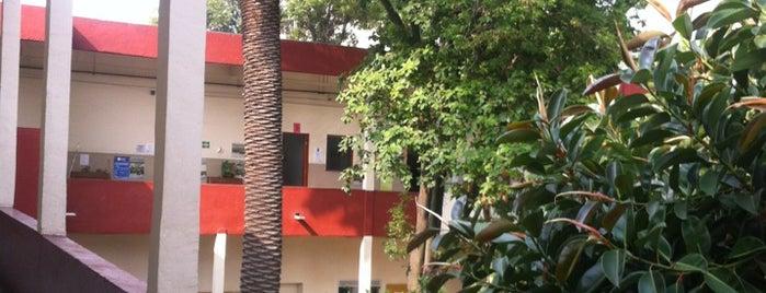 Universidad Autónoma de la Ciudad de México is one of Orte, die LiLiana gefallen.