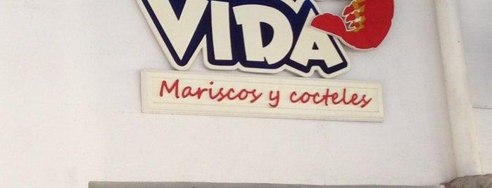 Pura Vida is one of Armando 님이 좋아한 장소.