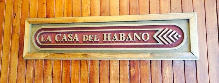 La Casa Del Habano is one of CUBA i.