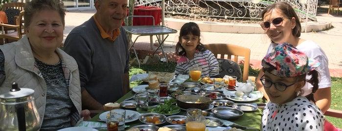 Bizimköy Kahvaltı/Et Mangal/Kırdüğünü is one of Lugares favoritos de Haydar.