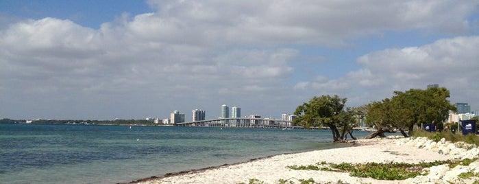 Dog Beach Key Biscayne is one of Miami.