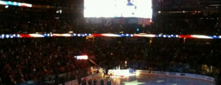 Amalie Arena is one of NHL (National Hockey League) Arenas.