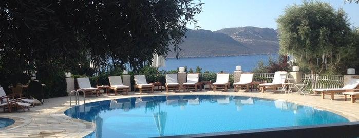 Olea Nova Hotel is one of Lieux qui ont plu à Ayşe Gizem.