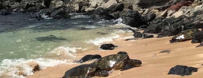 Hoopika is one of Maui.