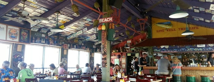 Cheeseburger in Paradise is one of Maui, HI.